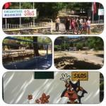 EMS 2017-MULTI-ENCUENTRO SILOS 2017_0062